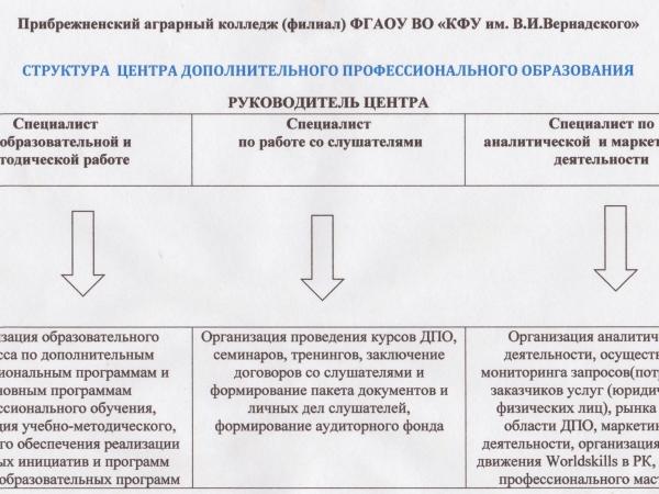 struktura-dpo